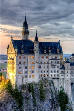 Preview iPhone wallpaper Neuschwanstein Castle, Bavaria, Germany