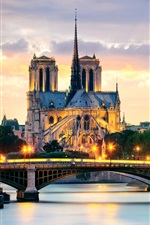 Preview iPhone wallpaper Paris, France, Notre Dame Cathedral, bridge, lights, Seine river, houses