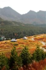 Preview iPhone wallpaper Slovakia, Western Carpathians, Tatra Mountains, house, trees, autumn