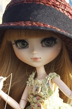Toys doll, hat, grass
