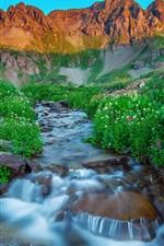 iPhone fondos de pantalla EE.UU., Silverton, Colorado, mañana, montañas, verano, corriente, rocas, flores