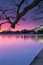 Preview iPhone wallpaper Washington, USA, evening, park, trees, lake