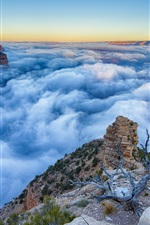 Preview iPhone wallpaper Arizona, Grand Canyon, mist, morning, sunrise, clouds