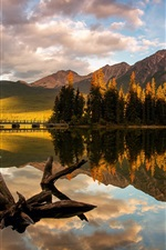 Preview iPhone wallpaper Canada, Jasper National Park, Pyramid Lake, trees, mountain, morning light