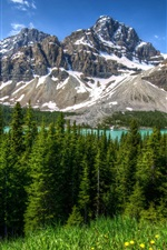 Preview iPhone wallpaper Canada, nature landscape, mountains, forest, Banff Park