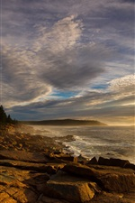 Preview iPhone wallpaper Coast, forest, rocks, sea, waves, sky, clouds, dusk