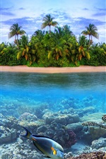 Preview iPhone wallpaper Coast landscape, island, sea, palm trees, fish, turtle