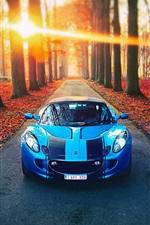 Lotus blue car, autumn, road, sunlight, trees