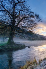 Preview iPhone wallpaper Morning landscape, mountain, river, trees, grass, frost