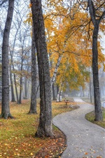 Preview iPhone wallpaper Park landscape, walkway, trees, benches, lake, autumn