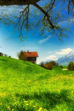 Preview iPhone wallpaper Spring greens, houses, grass, mountains, flowers, tree, meadow, sunny