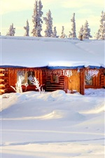 Preview iPhone wallpaper Winter thick snow, house, trees