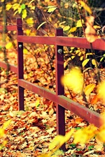 Preview iPhone wallpaper Autumn, fence, trees, yellow leaves