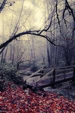미리보기 iPhone 배경 화면 공원, 다리, 잎, 나무, 스트림
