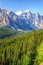 Preview iPhone wallpaper Canada, mountains, trees, forest, blue sky, Banff Park