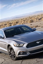 Preview iPhone wallpaper Ford Mustang Muscle silver car front view