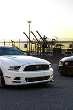 Preview iPhone wallpaper Ford Mustang black and white cars