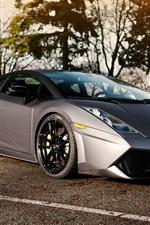 Lamborghini Gallardo Limitless silver supercar