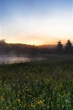 Morning scenery, fields, river, fog