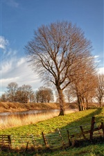 Preview iPhone wallpaper Netherlands, river, sunlight, trees, grass, house