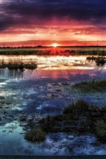 Preview iPhone wallpaper Swamp, horizon, sun, sunset, clouds, water, dusk