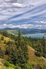 미리보기 iPhone 배경 화면 코들 레인 호수, 숲, 나무, 산, 구름