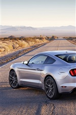 Preview iPhone wallpaper Ford Mustang silver muscle car back view