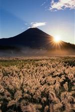 Preview iPhone wallpaper Japan, Fuji, mountain, grass, sun rays, sky, nature