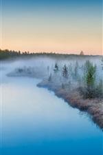 Mist rising, sunrise, river, trees