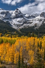 Preview iPhone wallpaper Mountains, forest, trees, road, autumn scenery