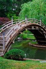 Park, trees, wood arch bridge, water, grass