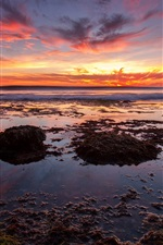 Preview iPhone wallpaper Sea sunset, beach, seaweed, red sky