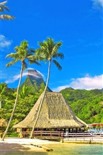 Preview iPhone wallpaper Tropical scenery, coast, palm trees, huts, bungalows, mountains, blue sky