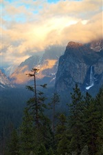 Preview iPhone wallpaper United States, California, mountains, trees, clouds, morning
