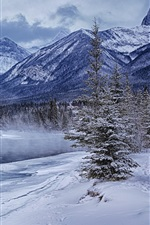 Preview iPhone wallpaper Winter mountains, forest, trees, river, snow, ice