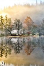 Preview iPhone wallpaper Beautiful painting, house, forest, lake, nature, morning, fog