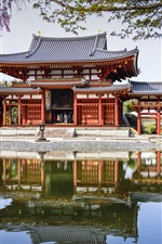 Preview iPhone wallpaper Byodo-In Temple, Japan, pond, reflection, spring, cherry