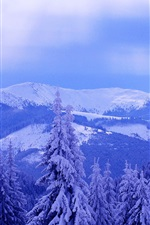 Preview iPhone wallpaper Cold winter, sky, clouds, mountains, trees, spruce, thick snow