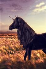 Preview iPhone wallpaper Creative design, unicorn, fields, sunlight