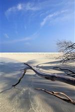 Preview iPhone wallpaper Embudu, Maldives, ocean, beach, sand, twigs