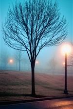 Preview iPhone wallpaper Fog, city, street, park, lights, night