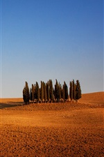 Preview iPhone wallpaper Italy, Tuscany, arable land, trees, sky, dry weather