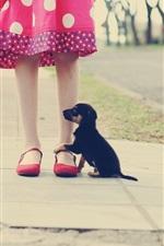 Preview iPhone wallpaper Little girl legs, black puppy