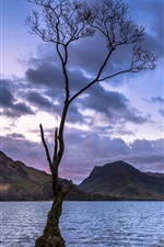 Preview iPhone wallpaper Lonely tree, mountains, lakes, sunset
