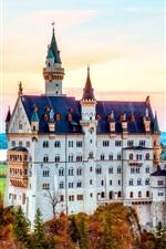 Preview iPhone wallpaper Neuschwanstein Castle, Bavaria, Germany, autumn