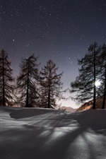 Preview iPhone wallpaper Night, winter, snow, mountains, trees, stars, nature landscape