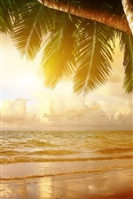 Preview iPhone wallpaper Summer tropical scenery, sunset, sea, ocean, palm trees, sunset