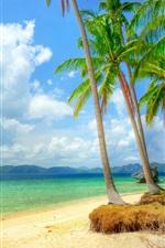 Costa tropical, praia, litoral, mar, azul, palmeiras, nuvens