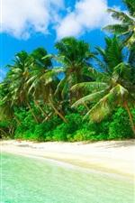 Preview iPhone wallpaper Tropical, paradise, beach, coast, sea, palm trees, summer