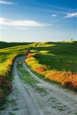 Preview iPhone wallpaper Tuscany, Italy, nature landscape, fields, road, flowers